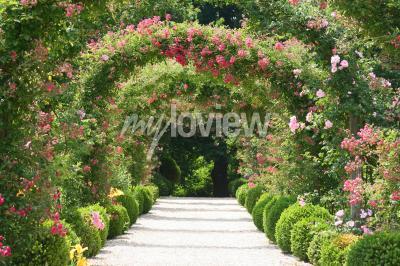 Фотообои Rose Arch В саду