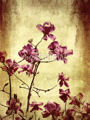 Фотообои Красивый фон гранж с цветами магнолии