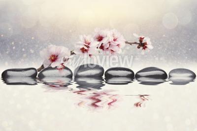 Фотообои Розовая орхидея