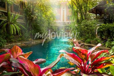 Фотообои Стиль джунглей бассейн под деревьями и дома фона в солнечное время