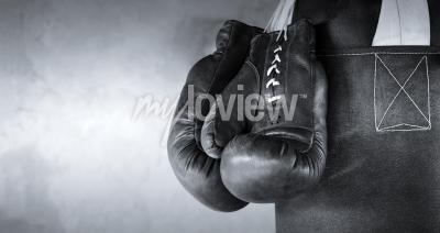 Фотообои Boxing gloves